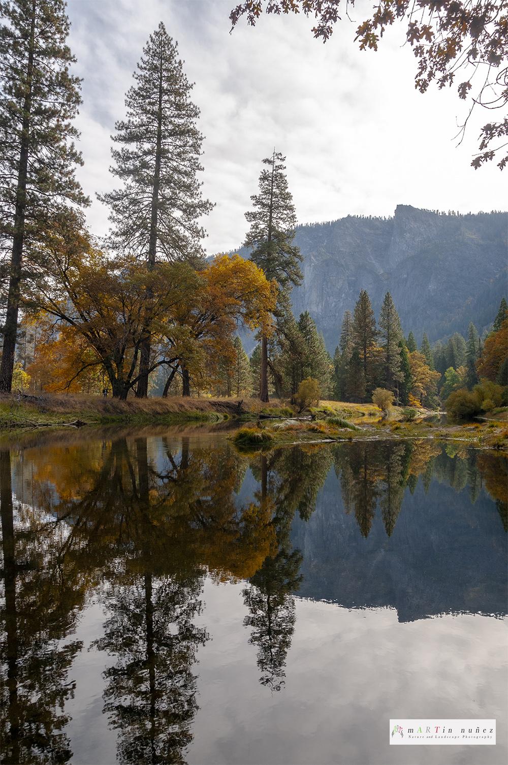 02472 Fall colors Yosemite National Park