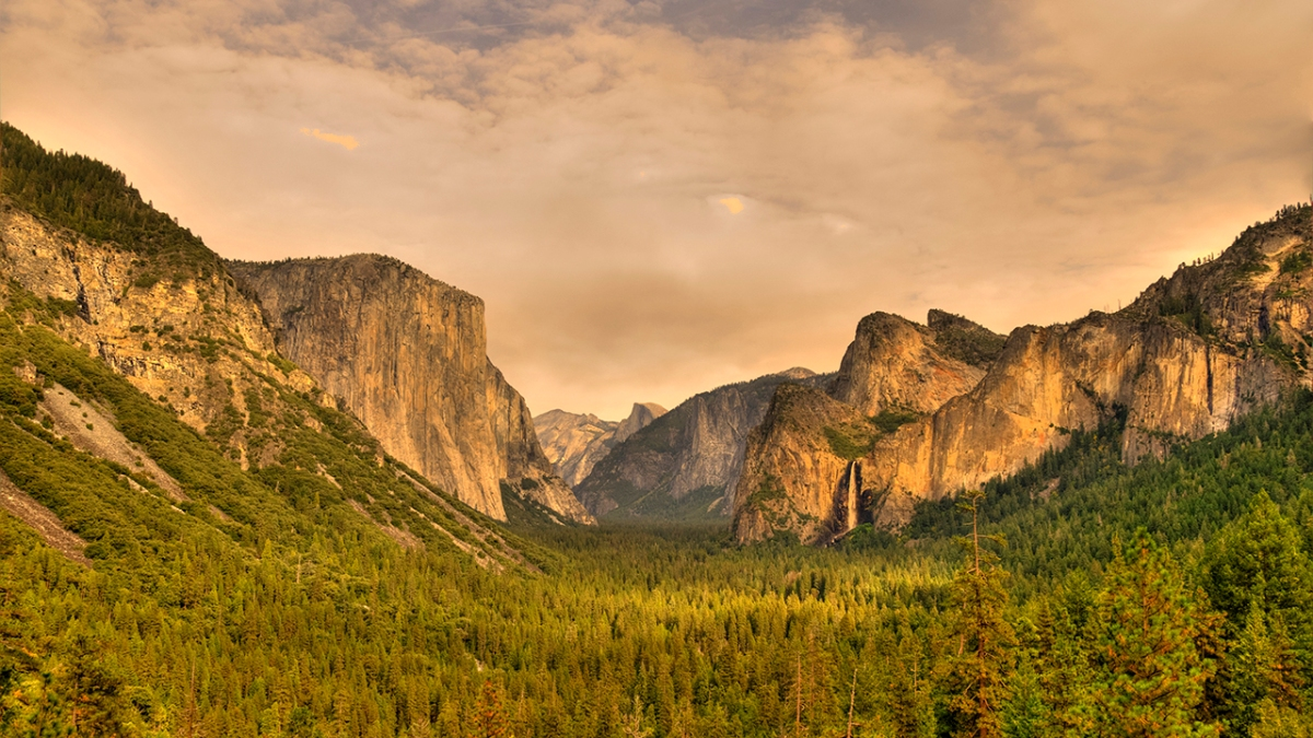 Yosemite's Nature and Landscape Photography (COVID-19).